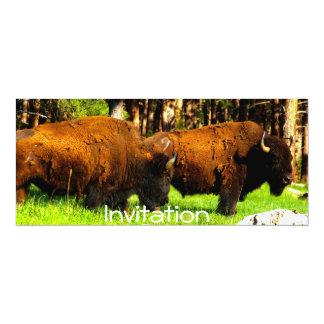 Party Invitation/ Card