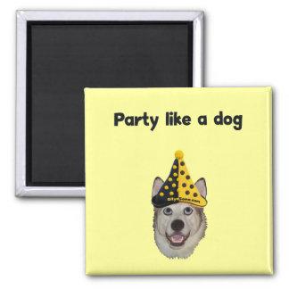 Party Like A Dog Fridge Magnet
