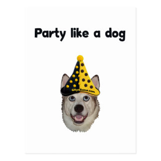 Party Like A Dog Postcard