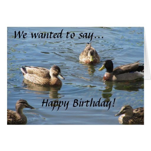 party of ducks birthday card