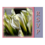 Party or wedding RSVP postcards - Calla Lilies