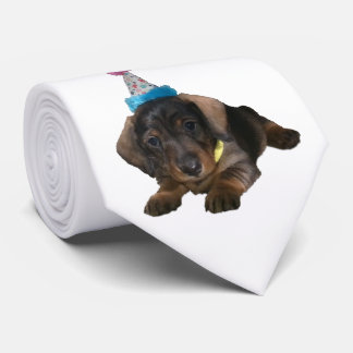 Party Pooper Neck Tie