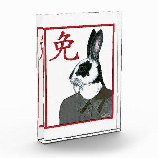 Party Rabbit Award