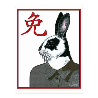 Party Rabbit Postcard