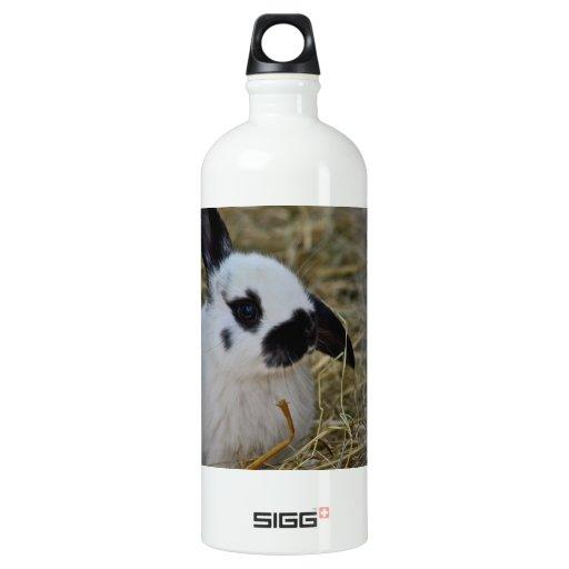 Party SIGG Traveler 1.0L Water Bottle