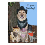 Party 'til the cows come home! greeting card