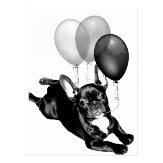 Party time French Bulldog postcard