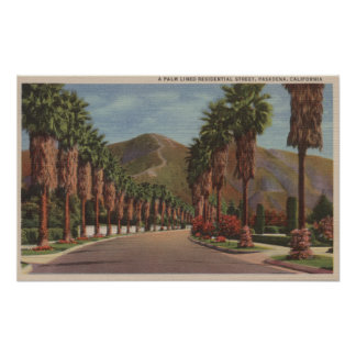 Pasadena, CA - escena y palmas de la calle de Resi Poster