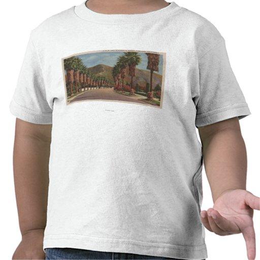 Pasadena, CA - escena y palmas de la calle de Resi Camiseta