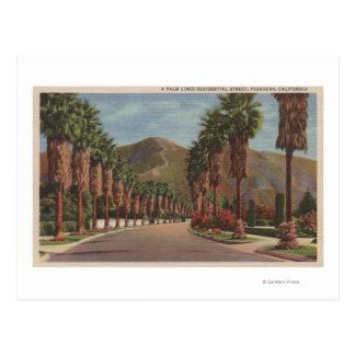 Pasadena, CA - escena y palmas de la calle de Tarjetas Postales