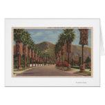 Pasadena, CA - Residental Street Scene & Palms Cards
