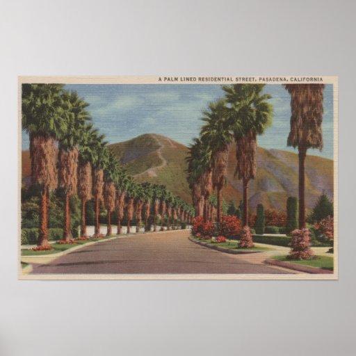 Pasadena, CA - Residental Street Scene & Palms Posters