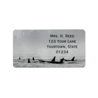 Pasando ballenas la etiqueta del remite etiquetas de dirección