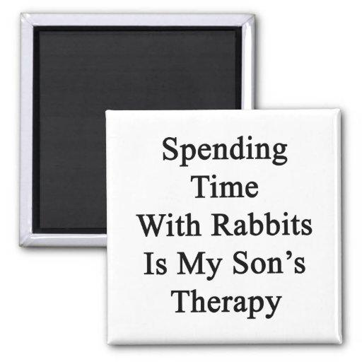 Pasar tiempo con los conejos es la terapia de mi h imán para frigorífico