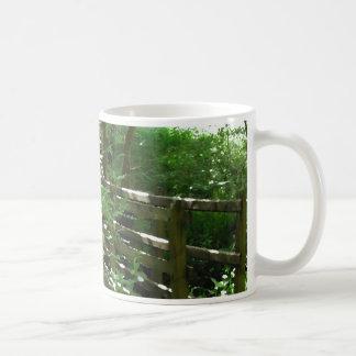 Pasarela en arbolado taza de café