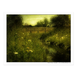 Pasarela sobre el prado del Wildflower romántico Tarjeta Postal