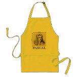 Pascal = 1 newton per square meter math joke aprons