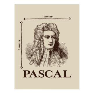 Pascal = 1 newton per square meter math joke postcard