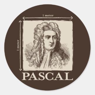 Pascal = 1 newton per square meter math joke classic round sticker