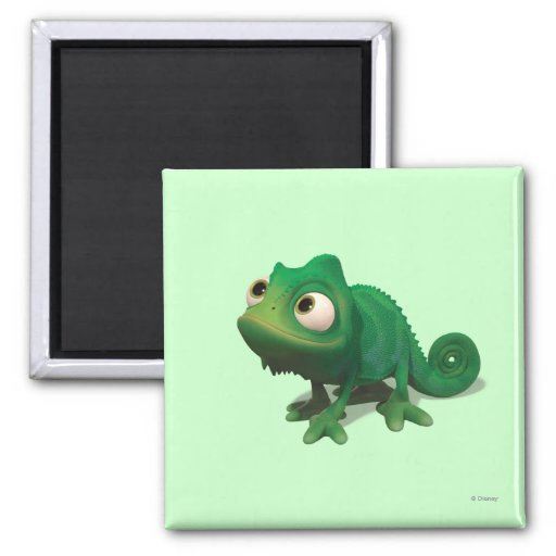Pascal 2 Inch Square Magnet