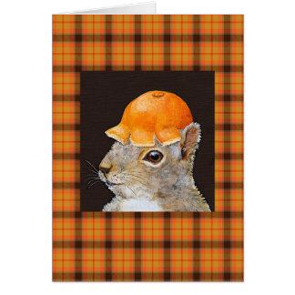 Pascal en tarjeta de la tela escocesa