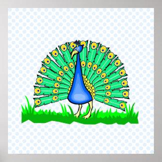 Pascal Peacock Print