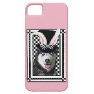 Páscoa - algum coelho o ama - rouco iPhone 5 cases
