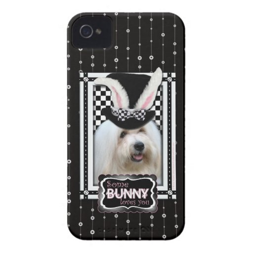 Pascua - algún conejito le ama - algodón de Tulear iPhone 4 Case-Mate Cobertura