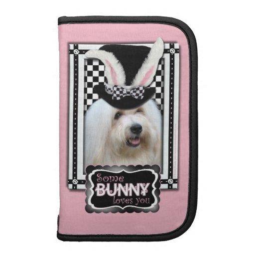 Pascua - algún conejito le ama - algodón de Tulear Organizador