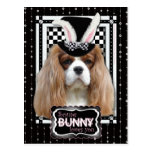 Pascua - algún conejito le ama - Blenheim Postal
