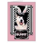 Pascua - algún conejito le ama - border collie tarjeta
