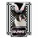 Pascua - algún conejito le ama - Boston Terrier Esculturas Fotograficas