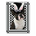 Pascua - algún conejito le ama - Boston Terrier Escultura Fotográfica