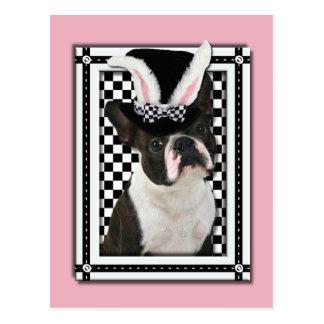 Pascua - algún conejito le ama - Boston Terrier Tarjetas Postales