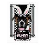 Pascua - algún conejito le ama - boxeador postal