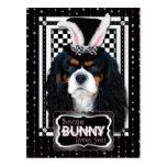 Pascua - algún conejito le ama - caballeros postal