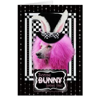Pascua - algún conejito le ama - caniche - rosa tarjeta de felicitación