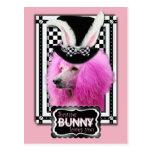 Pascua - algún conejito le ama - caniche - rosa tarjetas postales