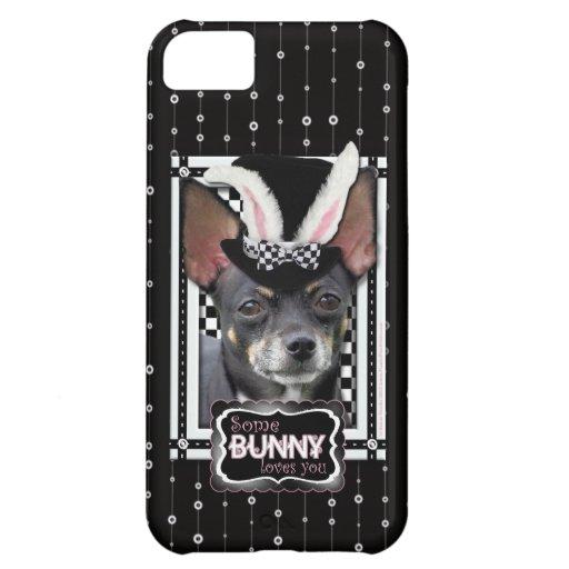 Pascua - algún conejito le ama - chihuahua
