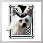 Pascua - algún conejito le ama - ChineseCrested Poster