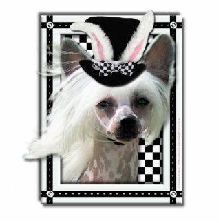 Pascua - algún conejito le ama - chino Crested Fotoescultura Vertical