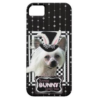 Pascua - algún conejito le ama - chino Crested iPhone 5 Case-Mate Cobertura