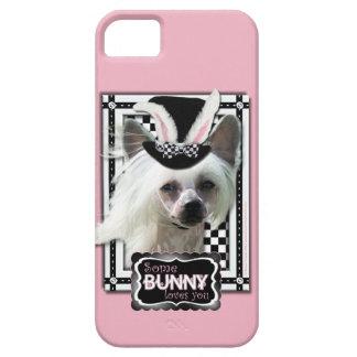 Pascua - algún conejito le ama - chino Crested iPhone 5 Case-Mate Coberturas