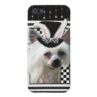 Pascua - algún conejito le ama - chino Crested iPhone 5 Carcasa