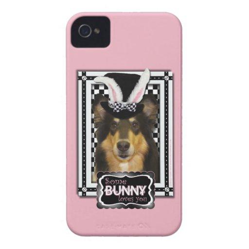 Pascua - algún conejito le ama - collie Caroline iPhone 4 Case-Mate Carcasa