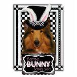 Pascua - algún conejito le ama - collie - Natalie Esculturas Fotograficas