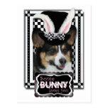 Pascua - algún conejito le ama - Corgi Postal