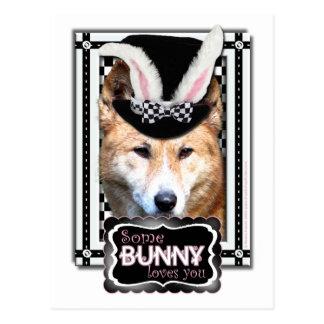 Pascua - algún conejito le ama - Dingo Postal