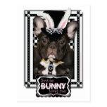 Pascua - algún conejito le ama - dogo francés postal