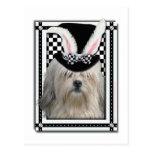 Pascua - algún conejito le ama - Lowchen Postal